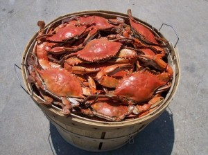 bushel of crabs